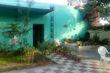 Lot of Greenery outside room includes Mango Tree, Neem Tree, Tulsi and numerous other plant species.