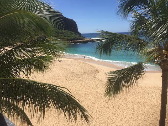 BEACHFRONT $1792 + Tax any stay from JUNE 1 to 30 - Waianae - Condominium