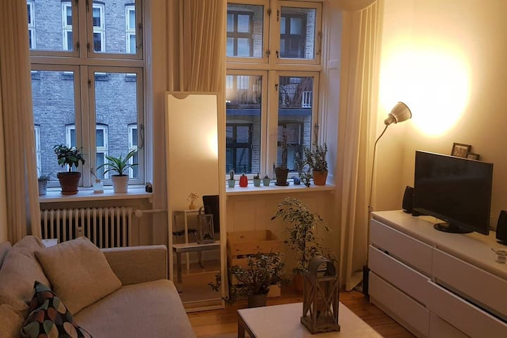 Small room in cosy apartment, central Copenhagen