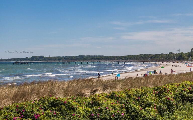 Ferienwohnung ''Strandläufer''