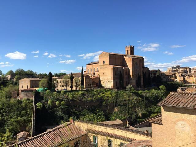 Semplicemente nel cuore di Siena - Siena