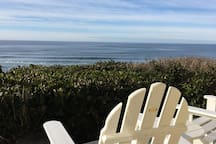 Watching whales from the deck.