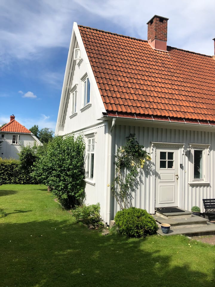 Fjellbo