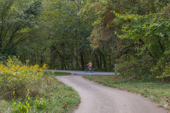Walk or bike right down to the trail
