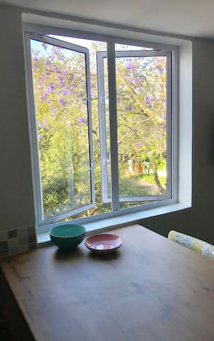 Beautiful views from kitchen window of the Jacaranda trees and the quiet neighborhood.