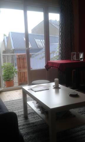 Nantes island, cosy, lumineux et calme appartement - Nantes - Flat