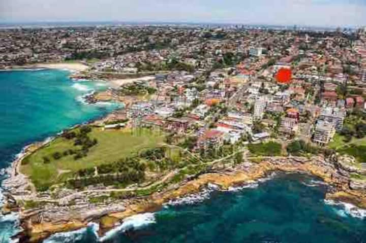 The best of Sydney's eastern suburbs in one place