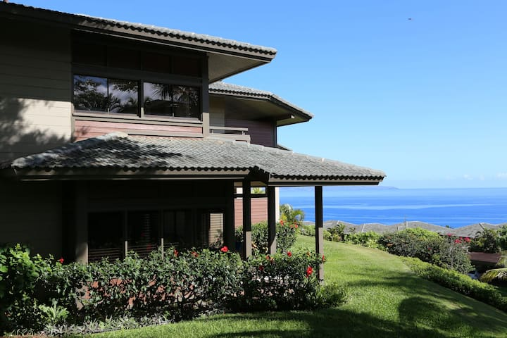 Contemporary Remodeled Ocean View Villa in Kapalua - Lahaina
