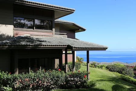 Contemporary Remodeled Ocean View Villa in Kapalua - Lahaina - Villa