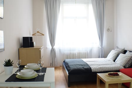 COSY STUDIO IN THE CITY CENTRE - Praha