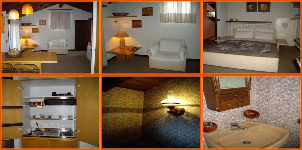 Accogliente ed elegante mansarda - Gandino - Apartamento