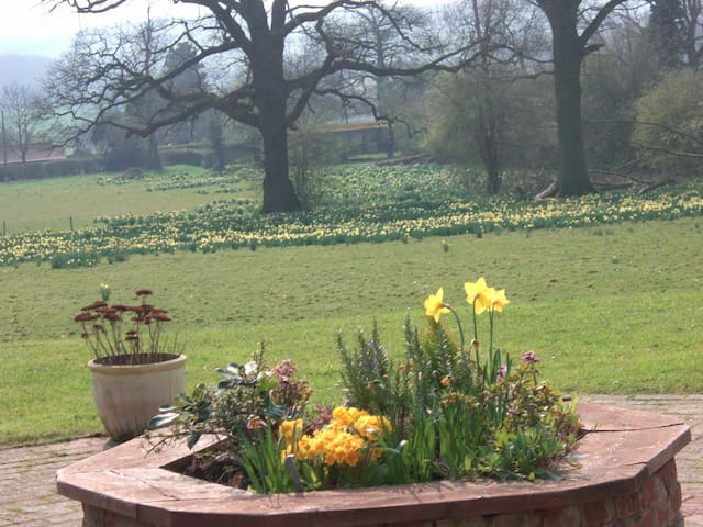 Gatwick Airport 10 mins drive, spectacular views - Surrey - Bed & Breakfast