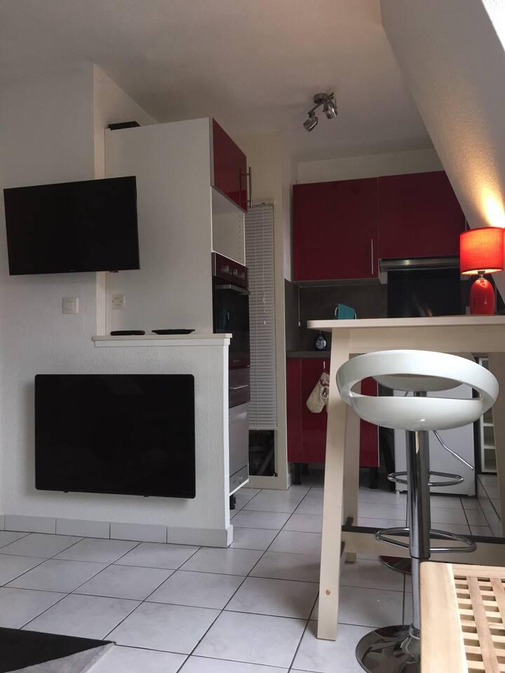 Studio Obernai avec balcon vue vignes, et parking
