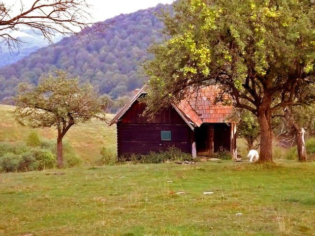 • COZO FANTU • log cabin Carpathian Mountains