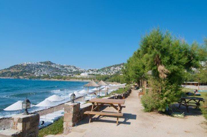 Bodrum Gümüşlük Beach Bungalow With Pool # 384 - Bodrum - Bungalow