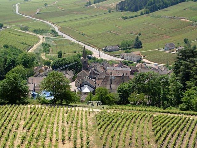 Au cœur des Vignes Beaunoises