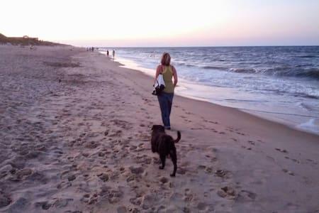 Jill's Place/Woods/Beaches/Pets Ok/no hidden fees