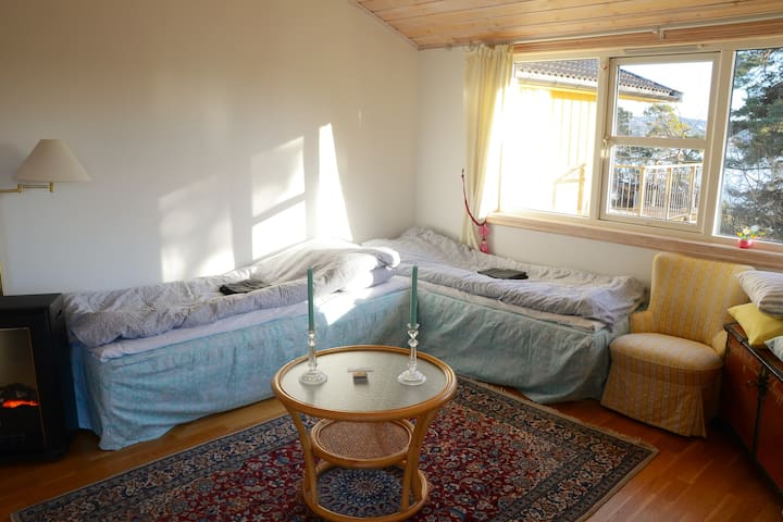 Nice studio on an island  5 km  for Oslo Downtown - Oslo - House