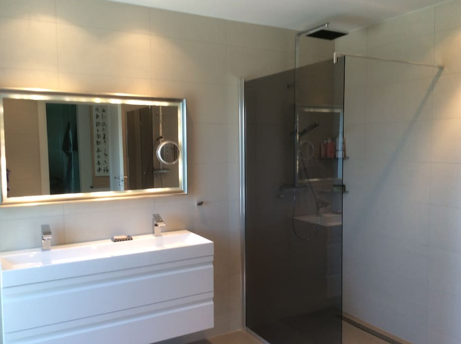 Master bathroom with two showers