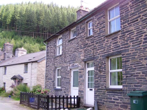 Cosy cottage in the heart of Mid Wales