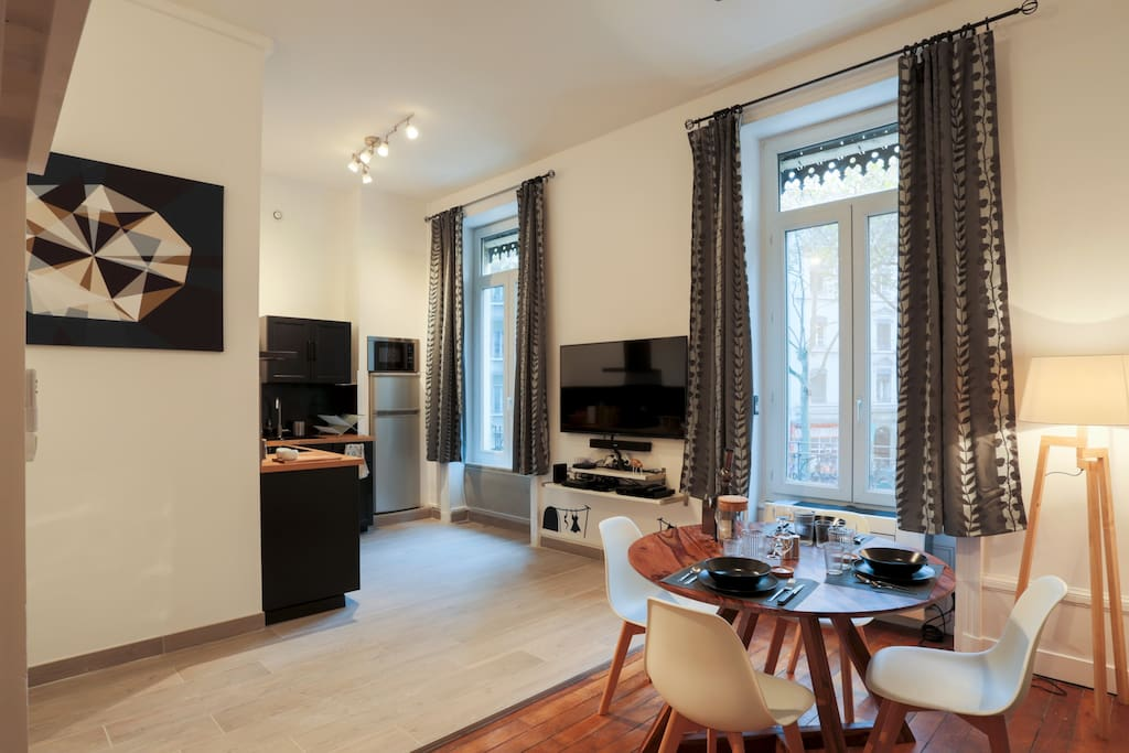 Studio coquet cosy centre lyon hightech appartements for Appartement atypique lyon location