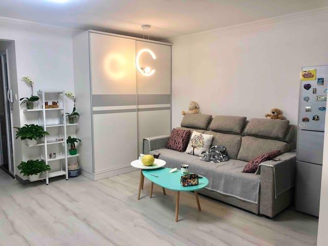 【天坛医院】万达广场,9号线丰台科技园,全新58平米独立一居公寓
