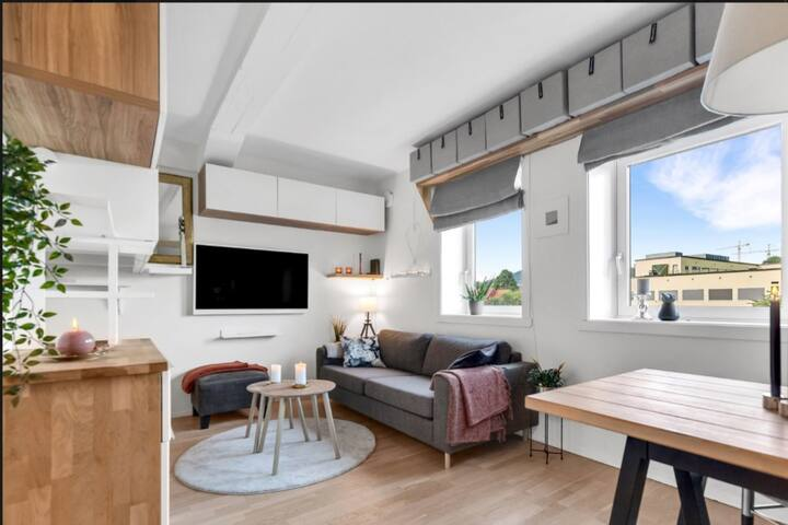 Comfort Studio, Center Oslo