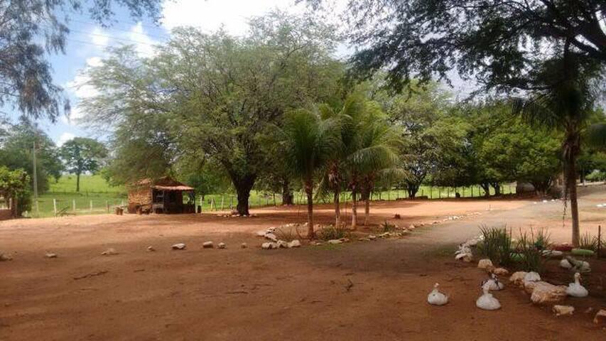 Fazenda Caeiras - Cajazeiras - Cabin