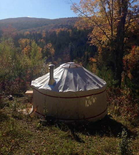 4 Season Lower Yurt Stay on VT Homestead