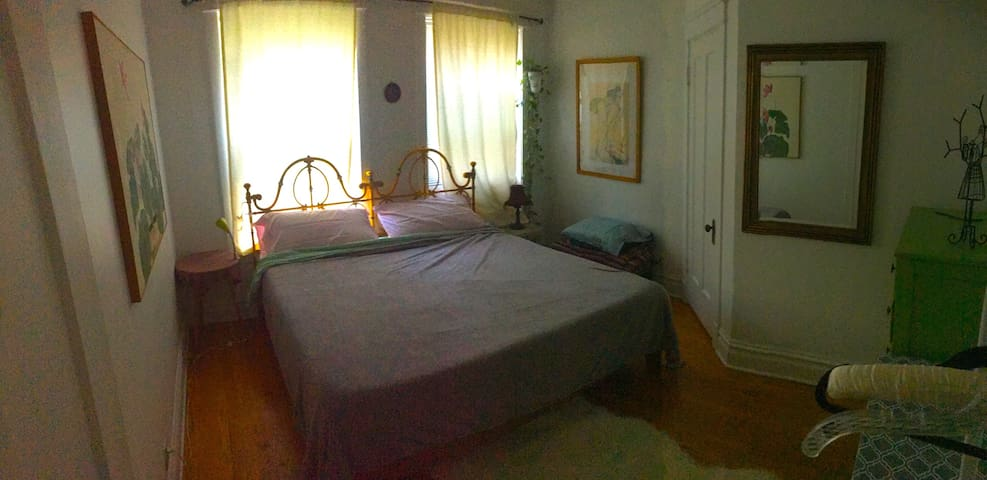 Lovely 1 Bedroom Apt in Andersonville w/King Bed