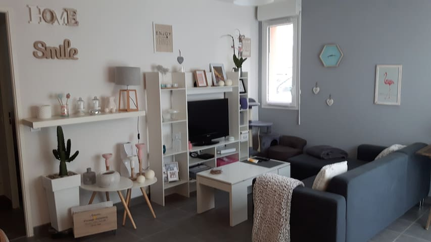 Tournefeuille T2 45m2 confortable et fonctionnel - Tournefeuille - Apartment