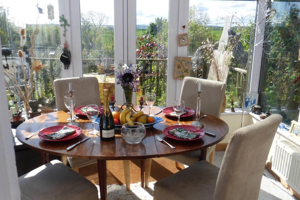 sunny dining