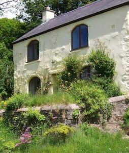 Traditional welsh mill farmhouse on beautiful land - Mynachlog-ddu - Casa