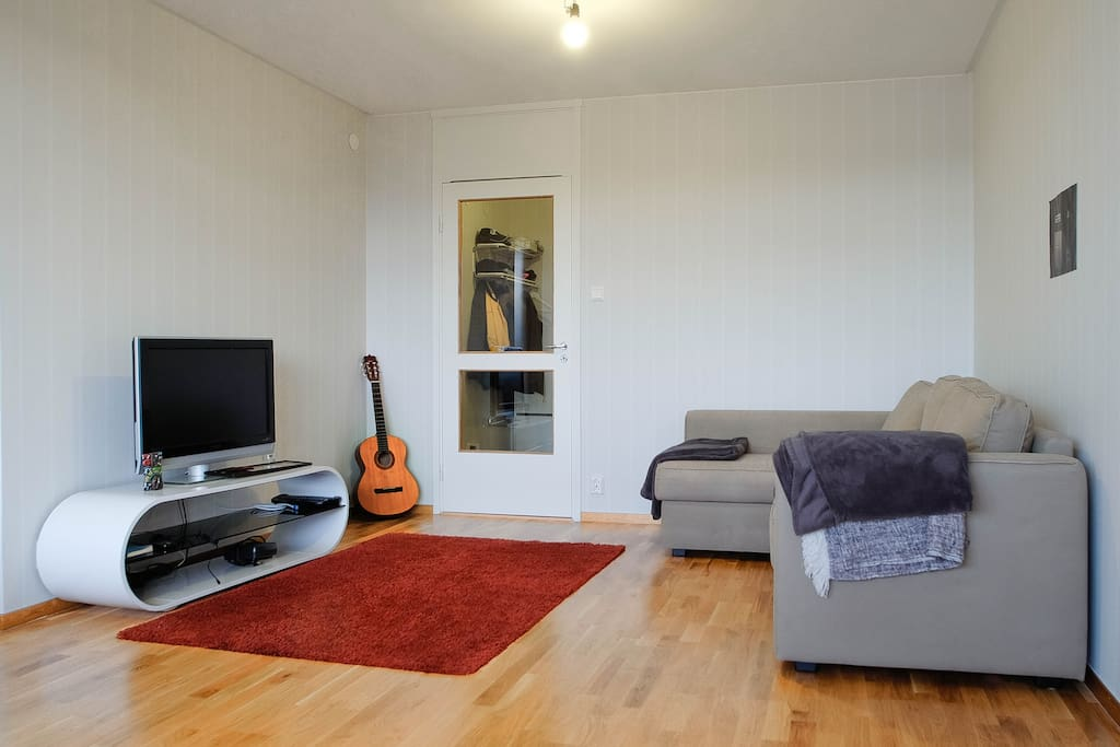 The living room (shared space)