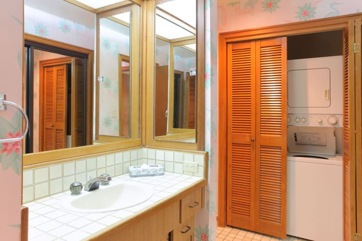 Guest bathroom with shower, sink, toilet and washer/dryer