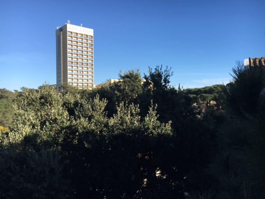 Vistas desde Apartamento / Views from Apartment 2