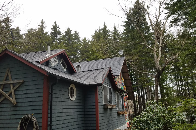 Cozy woodland cottage!