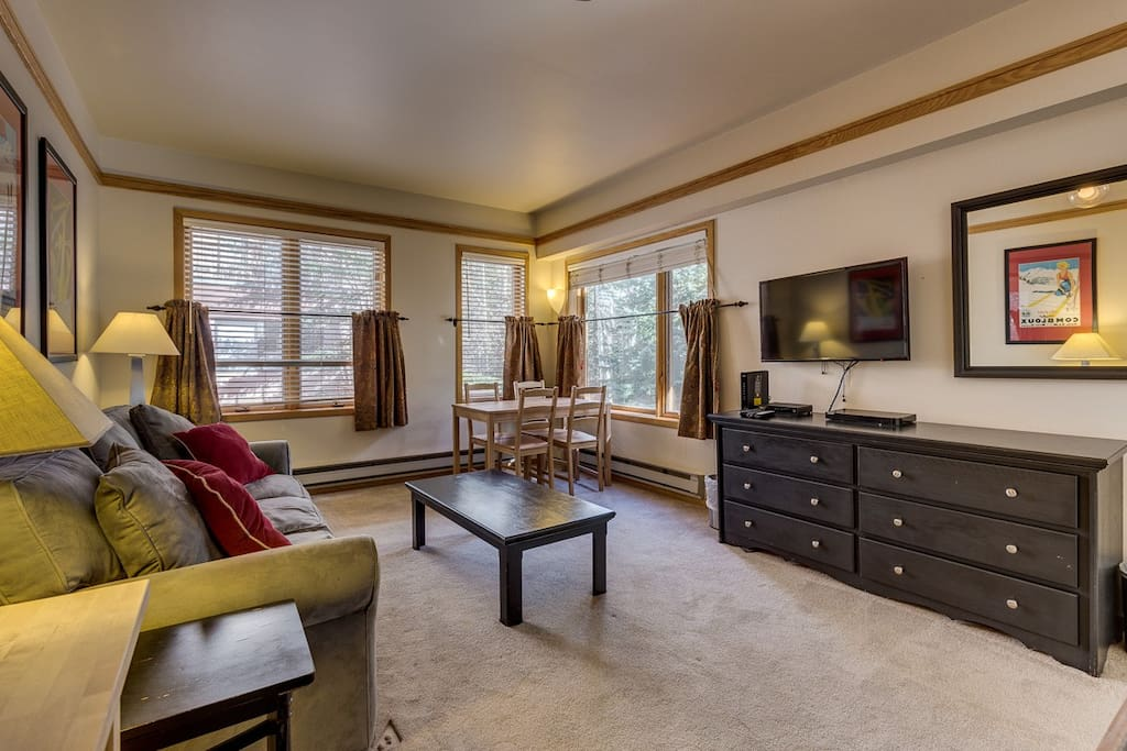 The living area features a queen-sized sleeper sofa and a flat screen TV. There is a dining area set off to the side.