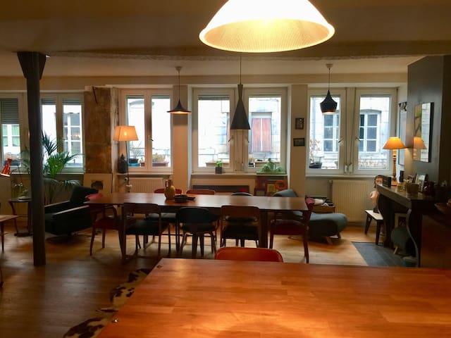 Appartement cosy centre ville piéton