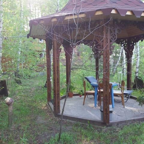 Живописный дом с видом на природу в хвойном лесу