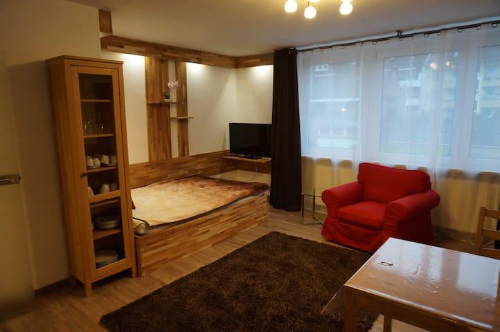LuPartment - Studio-Apartment - Stadtmitte (4)