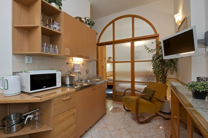 Equipped kitchenette with stove, microwave oven, fridge, kettle, dishes and utensils.