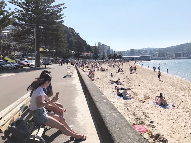 Superb Stay- Oriental Bay,  Wellington
