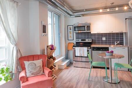 Beautiful studio with large terrace - Toronto - Apartment