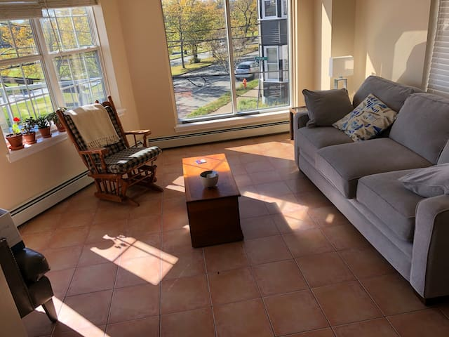 Charming Apartment in the Heart of Halifax