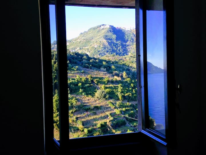 Double room with sea and vineyards view