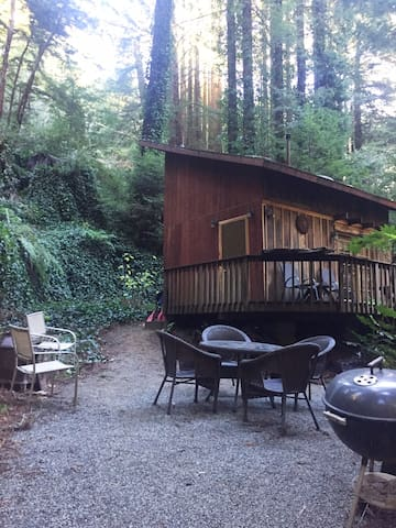 Cozy Cabin under the Redwoods - Carmel-by-the-Sea - Cabane