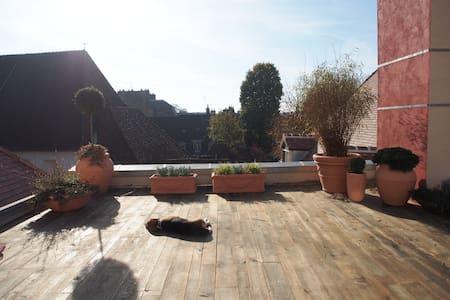 Small loft  in historical center - Dijon - Apartment