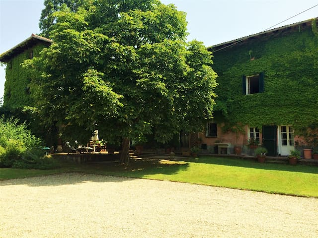 Ancient farmstead whit atelier of artist  Piemonte - Vignole Borbera - House