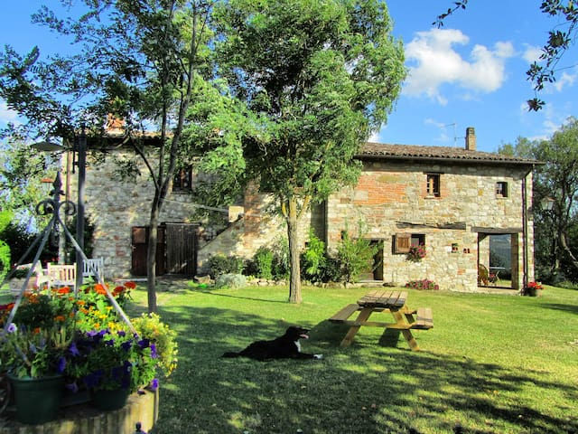 Ancient hilltop farmhouse with pool & views - Ripalvella - House